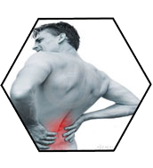 Body Alignment | Back